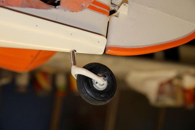 Tail circle detail